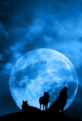 księżyc w pełni nazwy księżyców