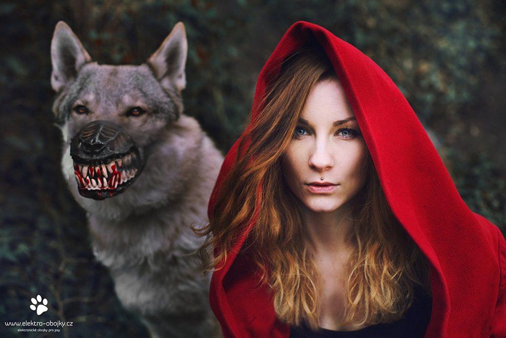 horrorowe, straszne gadżety - obroża wilkołaka, wilk i czerwony kapturek