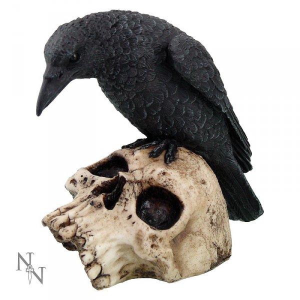 firgurka kruka na czaszce